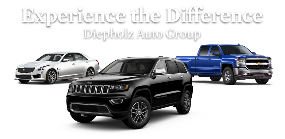 Experience the Diepholz Difference.
