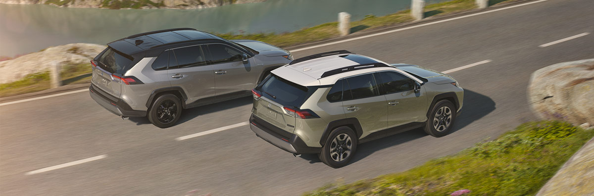 The 2019 Toyota RAV4 Exterior Rear