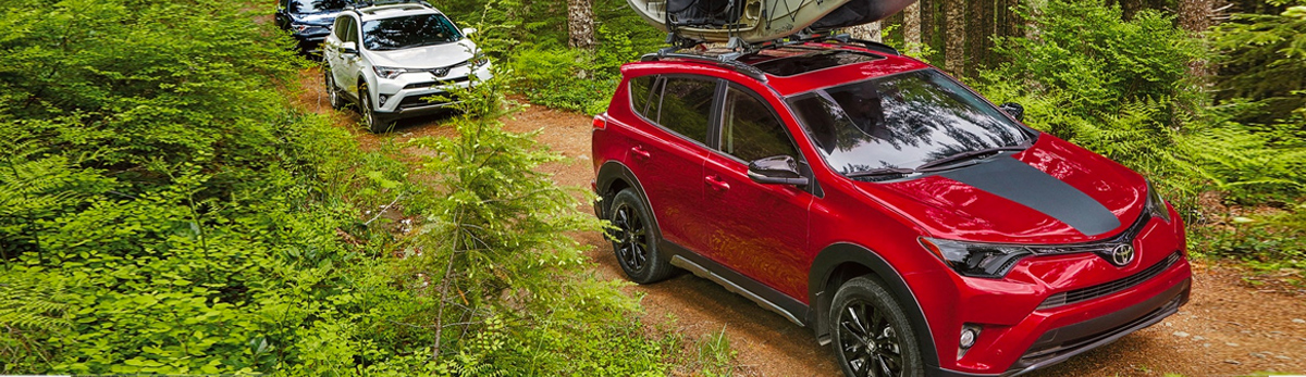 2018 Toyota RAV4 - Platinum AWD shown in Blizzard Pearl