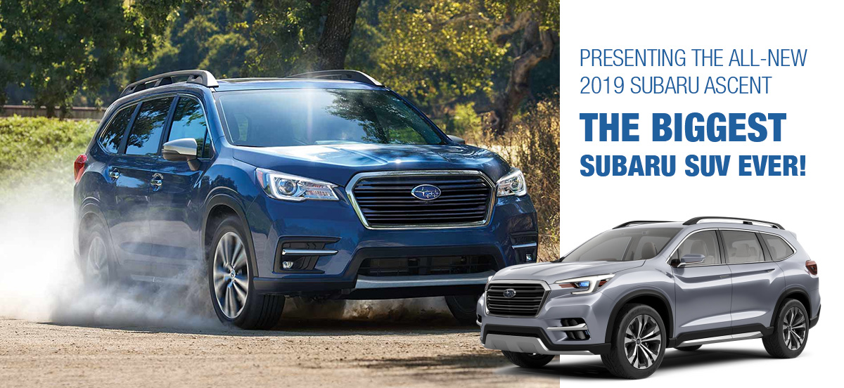 2019 Subaru Ascent dirt trail