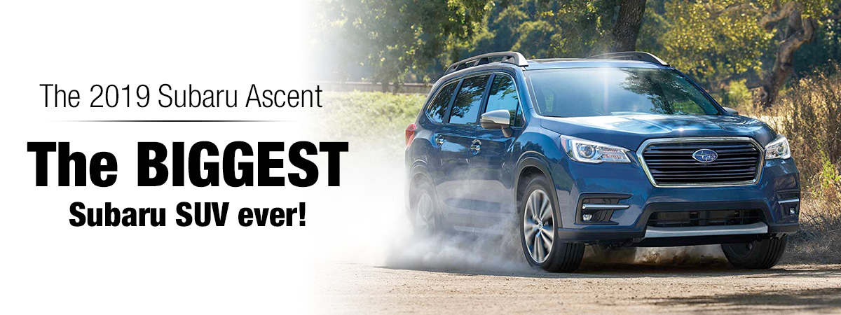 The 2019 Subaru Ascent driving on a dirt road