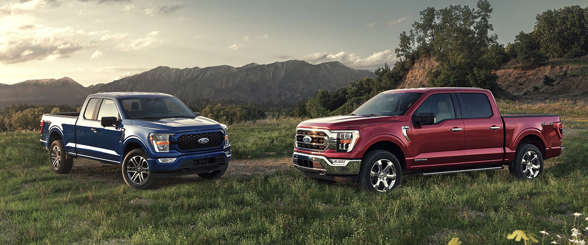 2021 ford F-150 lineup parked on grassy hilltop