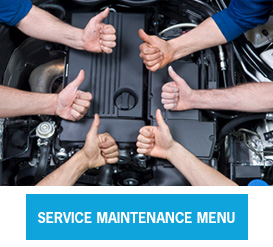 Service Maintenance Menu
