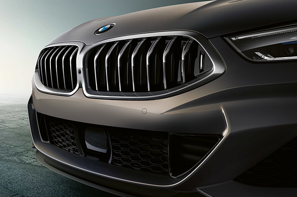 2019 BMW 8 Series Convertible grille