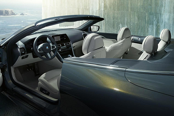 2019 BMW 8 Series Convertible interior open door