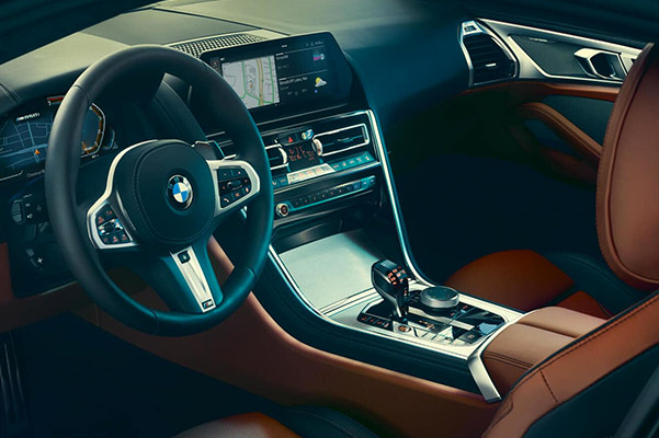 2019 BMW 8 Series interior side