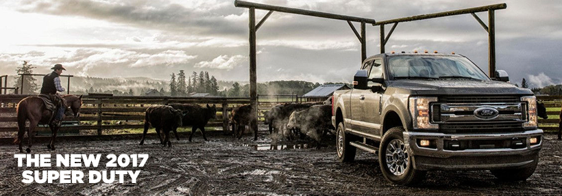 Mullinax Ford Olympia >> Buy the 2017 Ford Super Duty Truck | Ford Dealer in Olympia, WA
